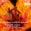 WAYS to the green heart of the Dolomites 19 – 20 luglio 2014, Val di Fiemme